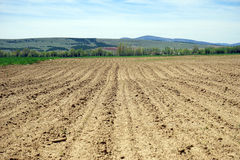 A plowed field on a background Stock Images