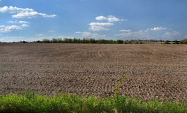 Plowed field on the black soil. Under the blue sky Stock Images