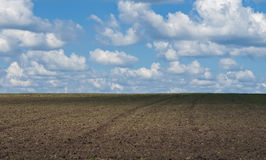 Plowed field with a blue sky and clouds. Plowed field on a background of the sky with clouds Royalty Free Stock Images