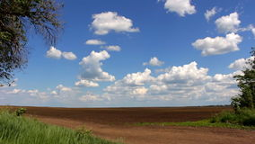 Plowed field and blue sky stock video