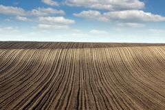 Plowed field and blue sky landscape spring season Royalty Free Stock Photography