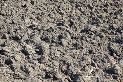 Plowed field close up Stock Image