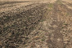 Plowed field closeup Stock Photography