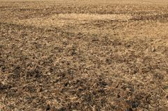 Plowed field closeup. Agricultural landscape with fresh plowed field as natural background Royalty Free Stock Image