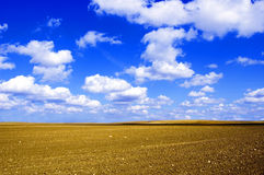 Plowed field conceptual image. Viev on plowed field and blue sky Stock Image