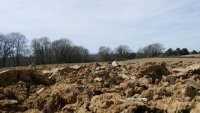 Plowed field in the countryside. A plowed field in the countryside stock footage