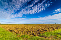 Plowed field in countryside Royalty Free Stock Photo