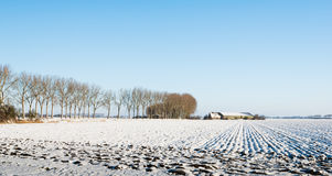 Plowed field covered with snow Stock Photo