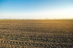 Plowed field after cultivation for planting agricultural crops. Landscape with agricultural land. Beds for plants. Agriculture,. Agroindustry. Farming royalty free stock images