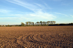 Plowed field in the Czech countryside. On the background of trees and houses lit by the evening sun Stock Photography