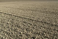 Plowed field detail Royalty Free Stock Image