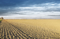 Plowed field in drought, landscape Royalty Free Stock Photo