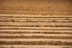 Plowed field. In early autumn Royalty Free Stock Images