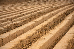 Plowed field. In early autumn Stock Photography