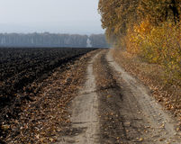 The plowed field and the earth road at an oak grove Royalty Free Stock Images