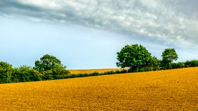 Rye East Sussex-Plowed Field royalty free stock images