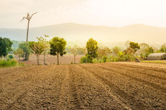 Plowed field farmland tillage Stock Photos