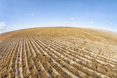 Plowed field in fish eye perspective Royalty Free Stock Image