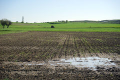 Plowed field flooded. Landscape summer day royalty free stock photos