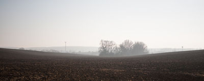 Plowed field at foggy morning Stock Photo