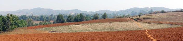 Plowed field. Footpath on the plowed land in Myanmar Royalty Free Stock Image