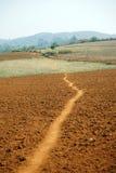 Plowed field. Footpath on the plowed land in Myanmar Stock Photos