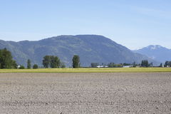 A plowed field in the Fraser Valley Royalty Free Stock Photo