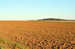 Plowed field fresh. With a blue sky Royalty Free Stock Image
