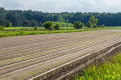 Plowed field. Fresh earth, agriculture Royalty Free Stock Photo