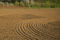 Plowed Field. Freshly Plowed Field with Spring Blossom Trees behind Royalty Free Stock Image