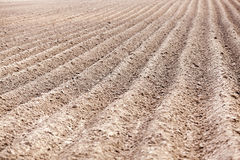 Plowed field, furrows Stock Images