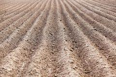 Plowed field, furrows Royalty Free Stock Photo