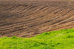 Plowed field in spring - copy space. Plowed field and green grass in spring - copy space Royalty Free Stock Images