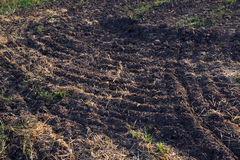 Plowed field after the harvest. In the autumn at sunset Stock Photography