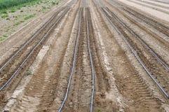 Plowed field. Stock Image