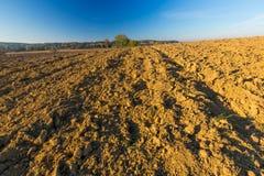 Plowed field landscape Stock Photo