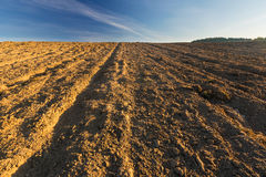 Plowed field landscape Royalty Free Stock Photos