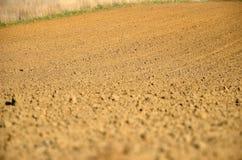 Plowed field. The Landscene with plowed field Stock Images