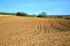 Plowed field. The Landscene with plowed field Royalty Free Stock Images