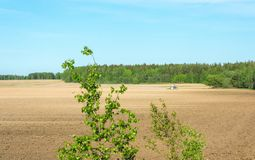 Plowed field. Royalty Free Stock Photos