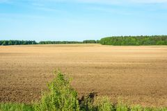 Plowed field. Stock Photos