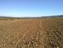 Plowed field. In the middle of plowed field stock image