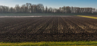 Plowed field and morning mist Royalty Free Stock Images