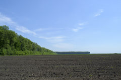 Plowed field and nearby forest Stock Photos