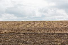 Plowed field for planting plants and vegetables. Brown field for plantations Royalty Free Stock Photo