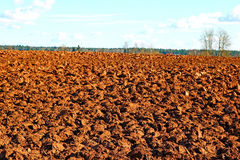 Plowed field prepared for sowing winter crops Royalty Free Stock Images