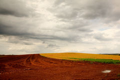 Plowed field after a rain storm Royalty Free Stock Images