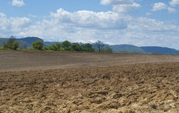 Plowed field ready for sowing Stock Photos