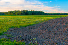 Plowed field ready for sowing in spring Royalty Free Stock Photo