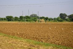A plowed field ready to sow the seeds royalty free stock images